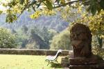 g-lion-with-garden